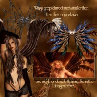 ~*FrightFul Wings*~ image 1