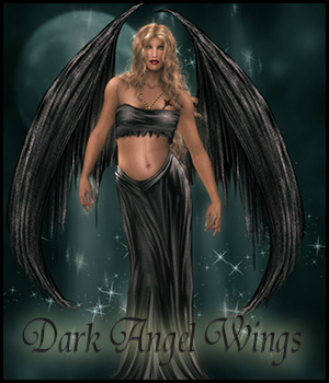 Dark Angel Wings 3D Models 2D Graphics antje