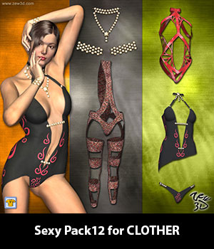 Sexy Pack12 for CLOTHER 3D Figure Assets zew3d