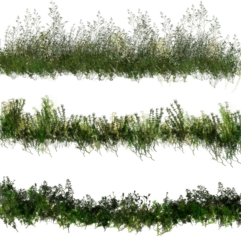50 Photoshop Brushes Of Dynamic Vegetation 3d Models 2d