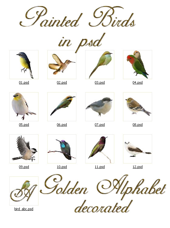 Painted Birds with Alphabet by MelGama ()