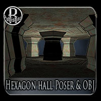 Hexagon Hall (Poser & OBJ) 3D Models RPublishing