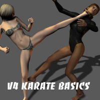 V4 Karate Basics 3D Figure Essentials ayukawataur