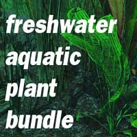 Freshwater Aquatic Plant Bundle by martinjfrost