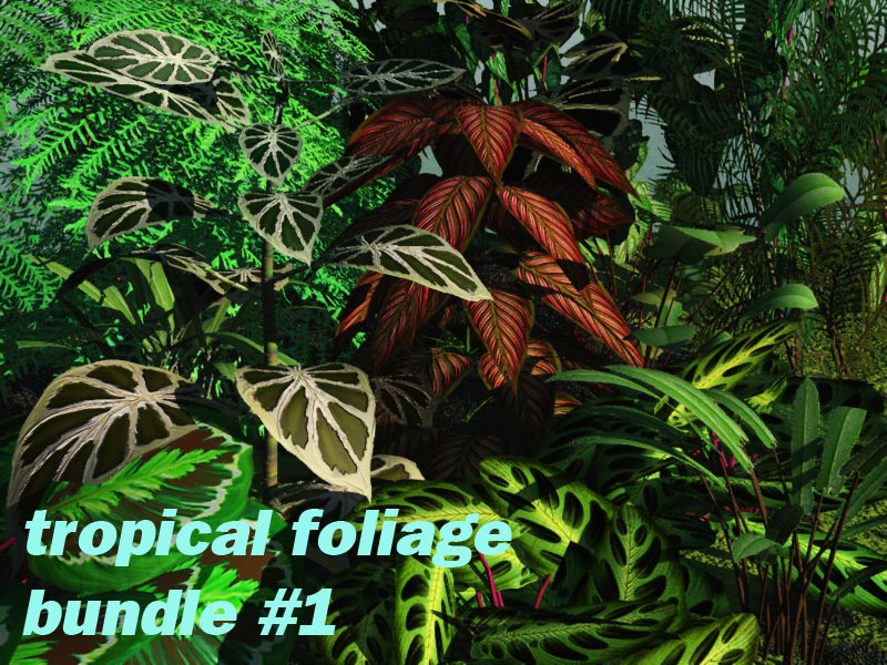 Tropical Foliage Bundle #1