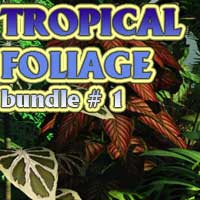Tropical Foliage Bundle #1 3D Models martinjfrost
