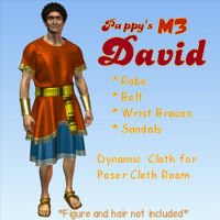 Pappy's David  Themed Poser DAZ 2D pappy411