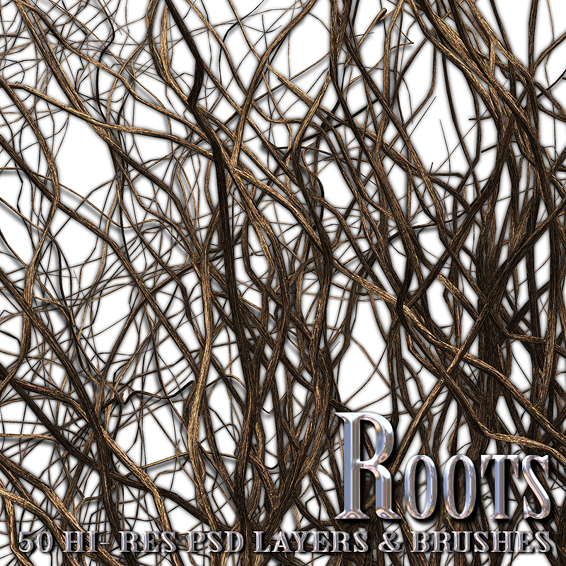 Roots - PSD Layers & Brushes