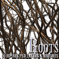 Roots - PSD Layers & Brushes Themed 2D And/Or Merchant Resources designfera