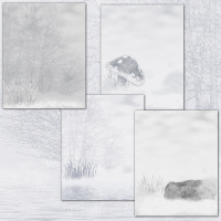 Snowstorm Backgrounds 2D 3D Models Holly