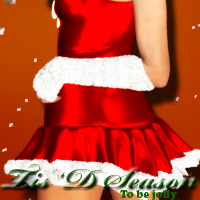 V4-Tis D Season 3D Figure Essentials HollywoodBest