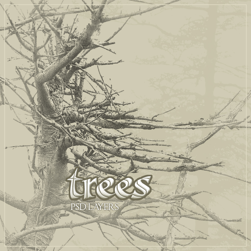 rons trees