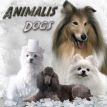 ANIMALIS - Dogs Themed 2D And/Or Merchant Resources Animals ilona
