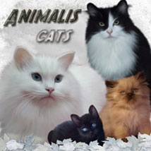 ANIMALIS - Cats Themed 2D And/Or Merchant Resources Animals ilona