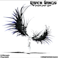 Raven Wings 3D Models Poisen