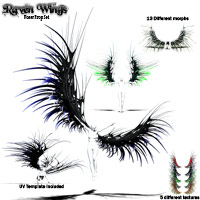 Raven Wings image 1