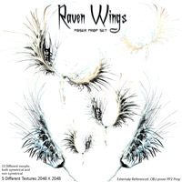 Raven Wings image 3