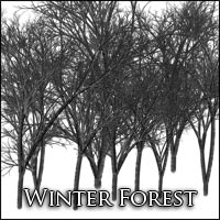 Deskar - Winter Forest  Deskar