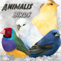 ANIMALIS-Birds 3D Models 2D ilona