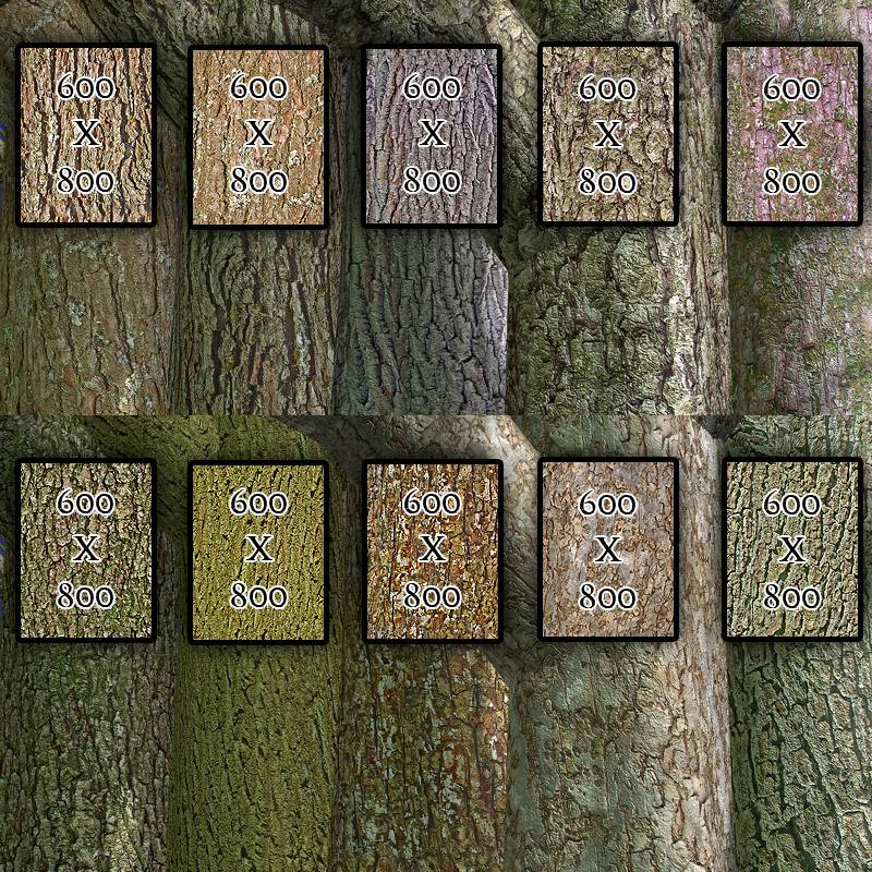 Flinks Bark-Textures Vol1&2