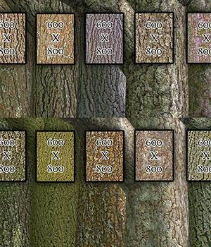 Flinks Bark-Textures Vol1&2 2D 3D Models Flink
