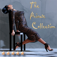 The Private Collection 3D Models Software SaintFox