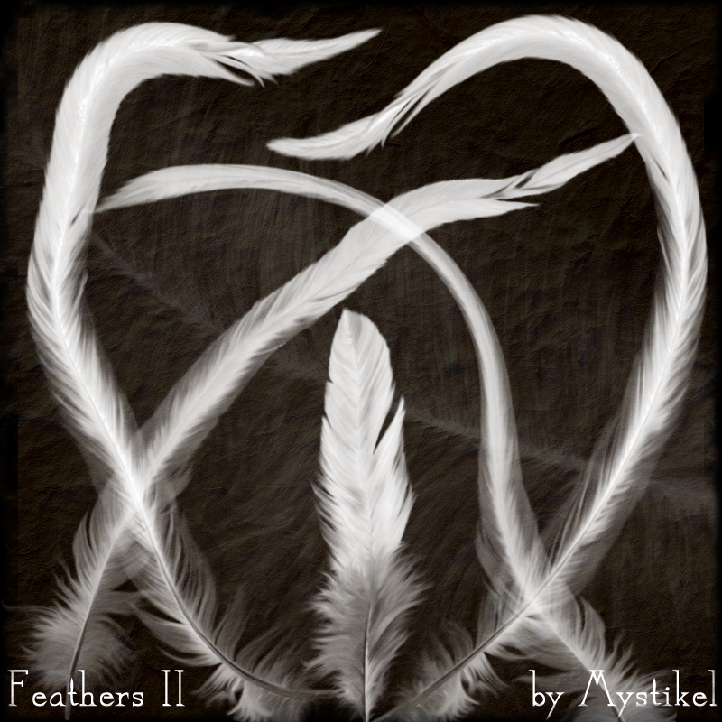 Feathers 2 Brushes