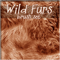 Wild Furs 3D Models 2D Graphics patslash