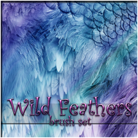 Wild Feathers 2D Graphics patslash