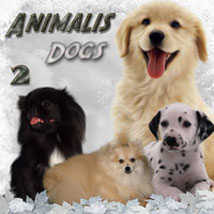 ANIMALIS - Dogs 2 2D And/Or Merchant Resources Themed Animals ilona