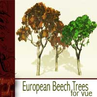 European Beech Trees 3D Models martinjfrost