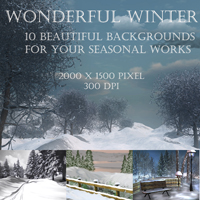 Wonderful Winter 3D Models 2D Graphics capelito