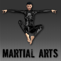 Martial Arts Poses V4  wenke