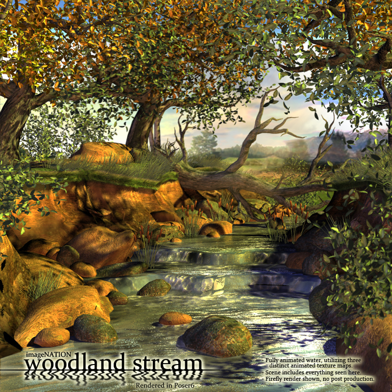 IN Woodland Stream