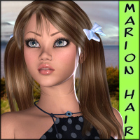 Marion Hair for V4/A4 Hair Themed Software RPublishing