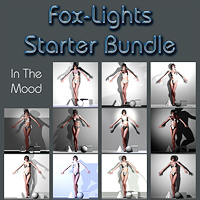 Fox Lights - Starter Bundle 3D Models Software Digital-Lion