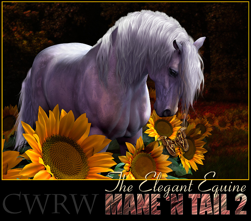 CWRW The Elegant Equine Mane 'N Tail Pack 2