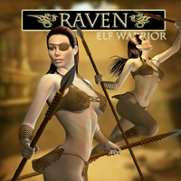 Raven Elf Warrior 3D Figure Essentials cole4965