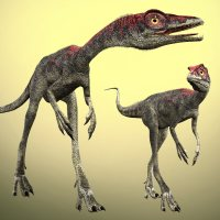 CompsognathusDR 3D Models Dinoraul