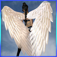 CrystalShades For Seraph Wings 3D Models prae