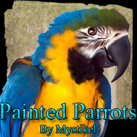 Painted Parrots 3D Models 2D Graphics mystikel