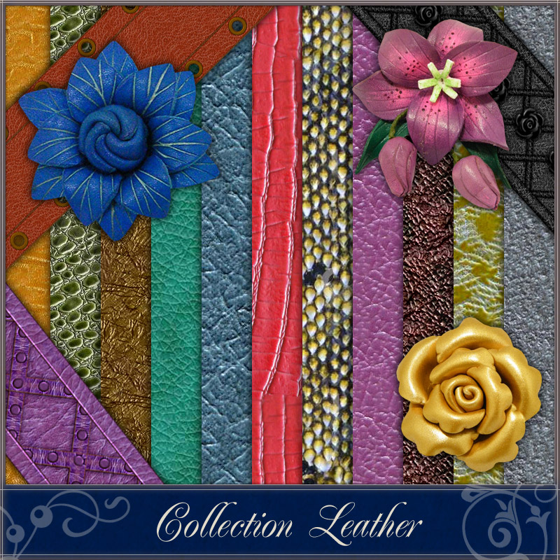 Collection Leather