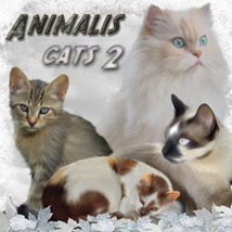 ANIMALIS - Cats 2 2D 3D Models ilona