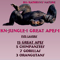 KN-Jungle-1GreatApes1 by TheKatster