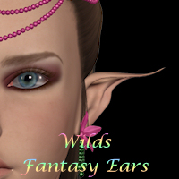 Wild's Fantasy Ears Characters WildDesigns