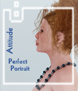 Perfect Portrait 1 - Attitude 3D Lighting : Cameras SaintFox