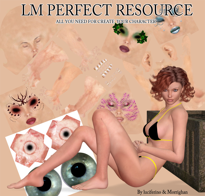 LM PERFECT RESOURCE KIT for V4