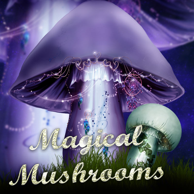 Magical Mushrooms by antje