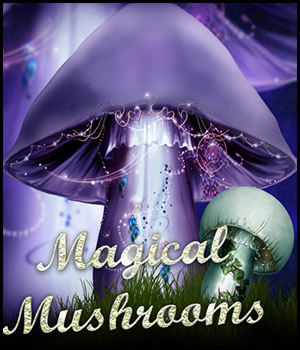 Magical Mushrooms by Bez