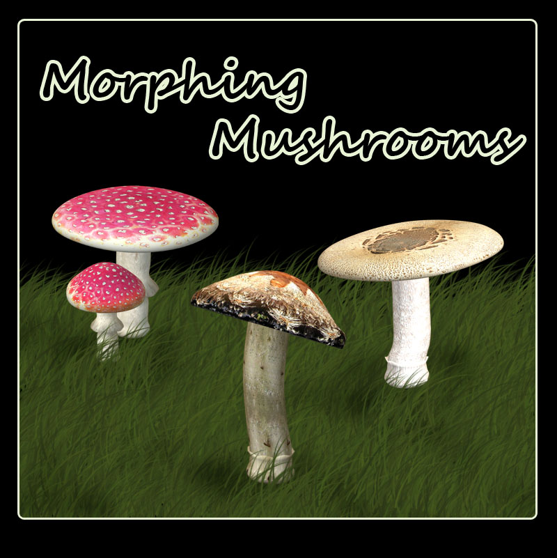 Morphing Mushrooms